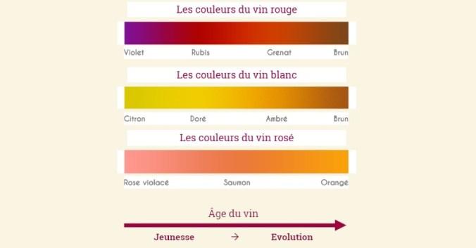 blog vin Beaux-Vins apprendre visuel couleurs déguster dégustation vins