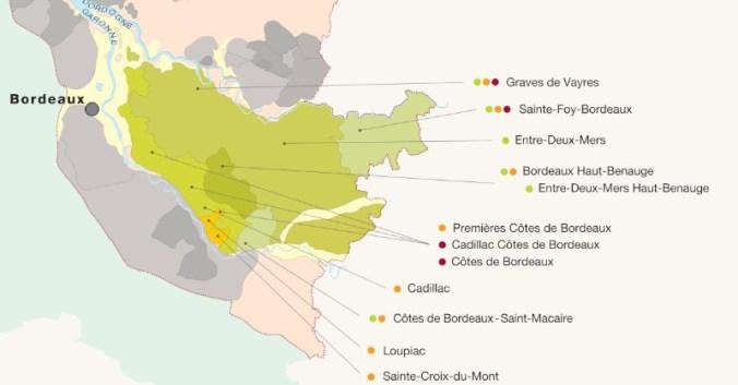 blog vin Beaux-Vins oenologie dégustation vins vignoble Bordeaux Entre-deux-Mers