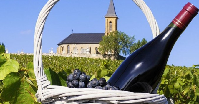 Blog Beaux-Vins dégustation déguster oenologie vin viticole vignoble beaujolais