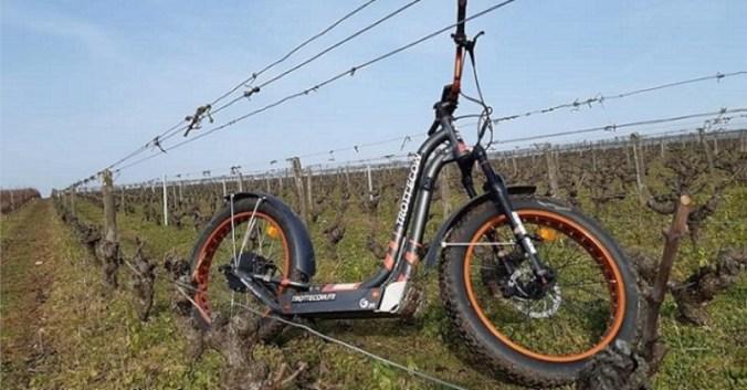 Rando-Vignes en Trottinettes electriques