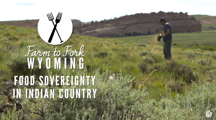 Indigenous Food Sovereignty Movement Pt. 1