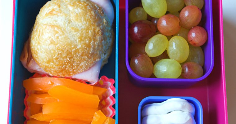 Back to School: Bento Lunchbox Series
