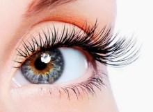 Useful Tips to Grow Eyelashes Naturally