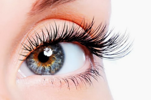 Useful Tips to Grow Eyelashes Naturally