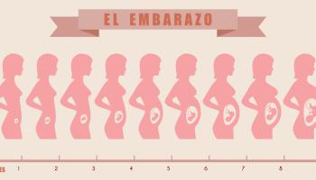¿Qué podemos esperar del embarazo semana por semana?
