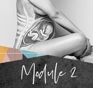 PFI-module2