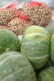 Peanuts and Japanese squash