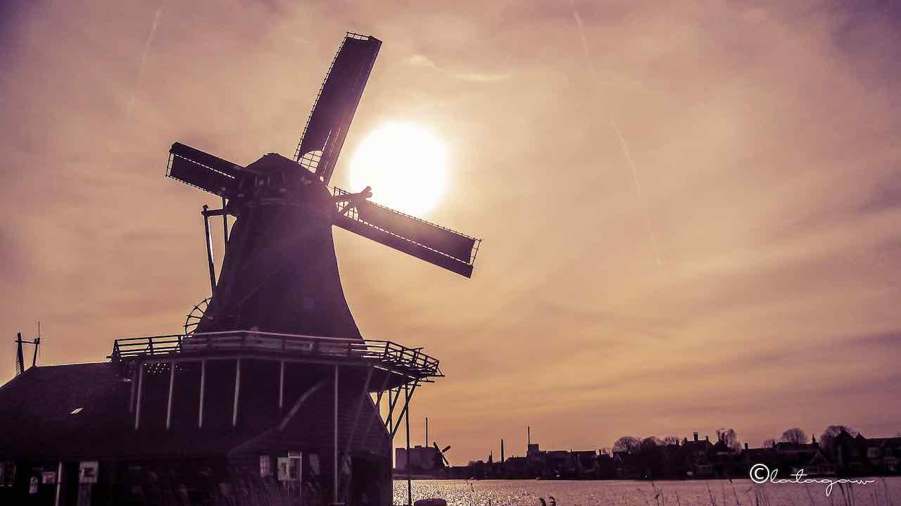 a photo of a sunset amidst the famous windmill in amsterdam netherlands