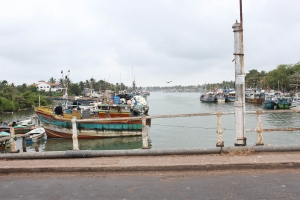 Negombo River