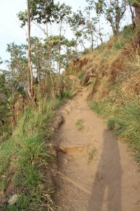 Way to little Adam's Peak