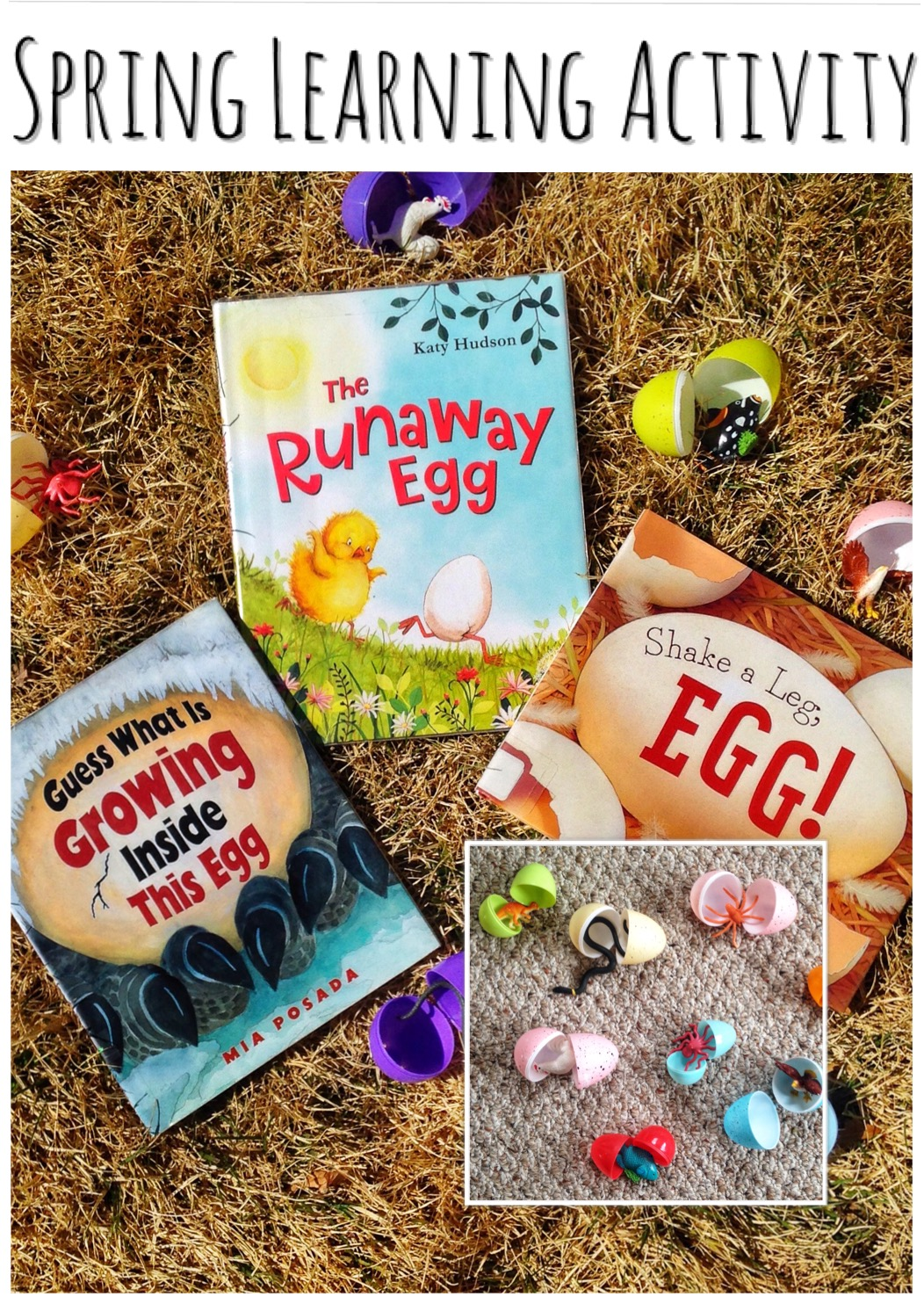 Spring Learning Activity Using Easter Eggs