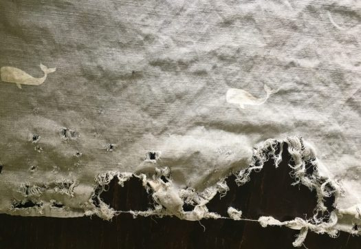 Image of the damaged shower curtain.