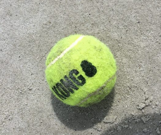 A yellow tennis ball made by Kong.