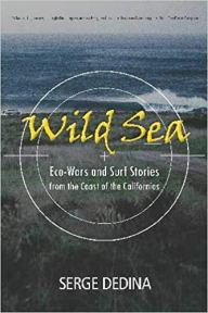 Cover of Wild Sea book