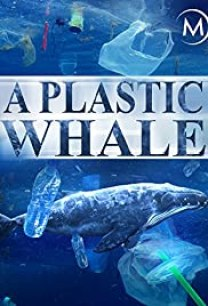 A Plastic Whale film cover