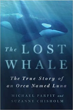 The Lost Whale: The True Story of an Orca Named Luna book cover