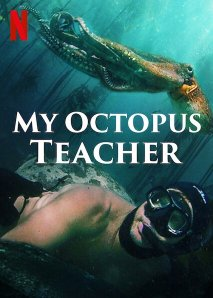 My Octopus Teacher film art, showing a diver and octopus swimming