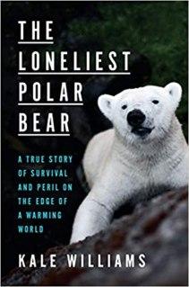 The Loneliest Polar Bear cover, with a polar bear