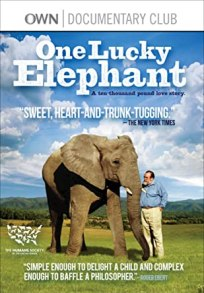 One Lucky Elephant film cover