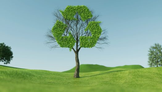 Graphic of a tree with the leaves in the shape of a recycling symbol. Blue sky background.