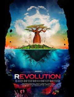 Revolution film cover