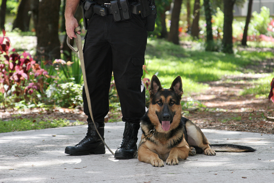 Hiring Security Guards in Houston