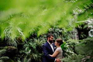 bride and groom framed by ferns at Como Conservatory