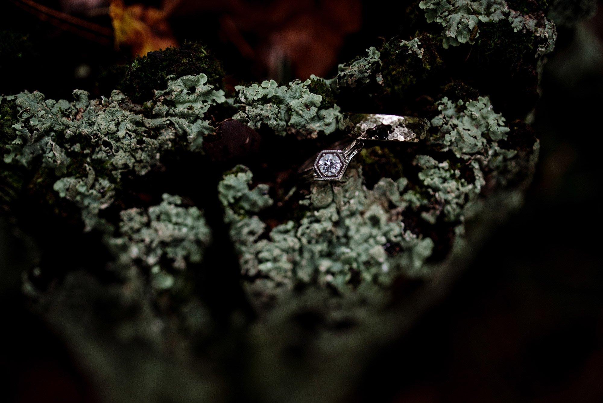 MN wedding at Camp Miller wedding rings in lichen stump