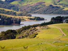 View from Sandymount, Dunedin, New Zealand.