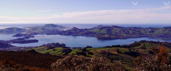 View from Mount Cargill, Dunedin, New Zealand.