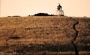 Lighthouse at Katiki Point, Moeraki Peninsula, New Zealand.