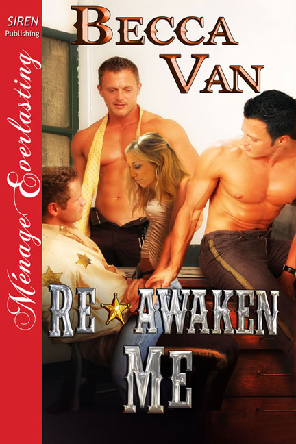 Re-Awaken Me – Blurb