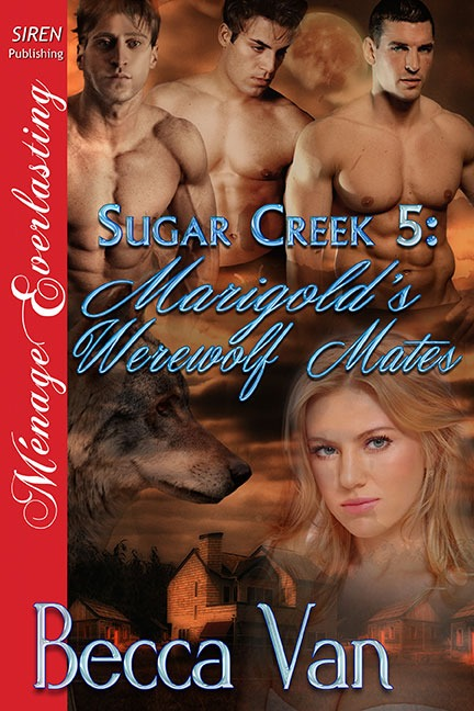 Sugar Creek 5 – Marigold's Werewolf Mates – Blurb