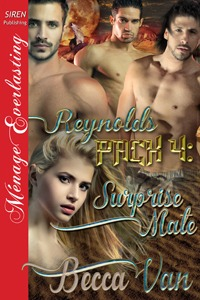 Reynolds Pack 4 – Surprise Mate – Excerpt