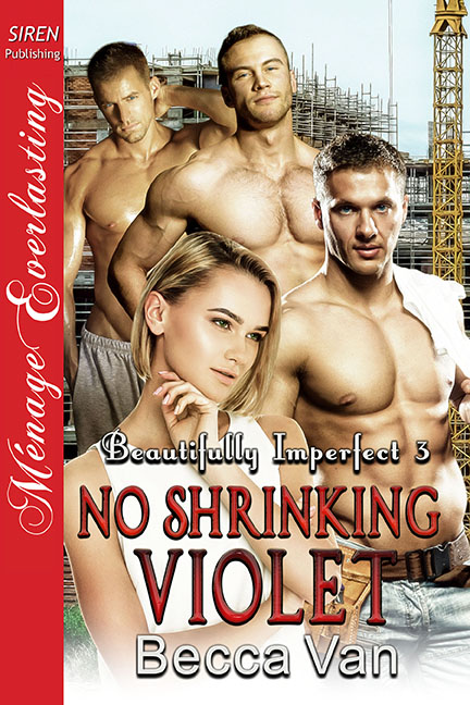 Beautifully Imperfect 3 - No Shrinking Violet Cover