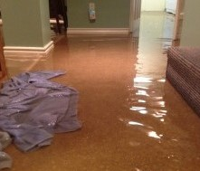 Flooded Basement? Tips to Clean it Safely.