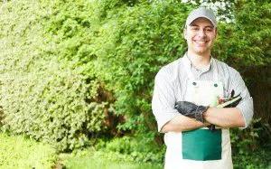 4 Ways to Go Green in the Garden