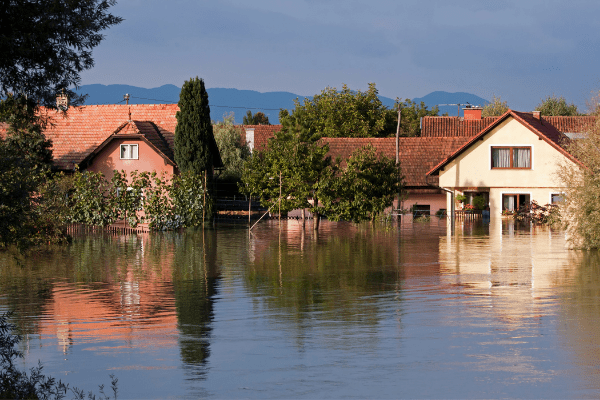 neighbourhood flooding will be common due to climate change effects