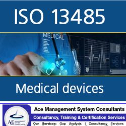ISO 13485 (02)