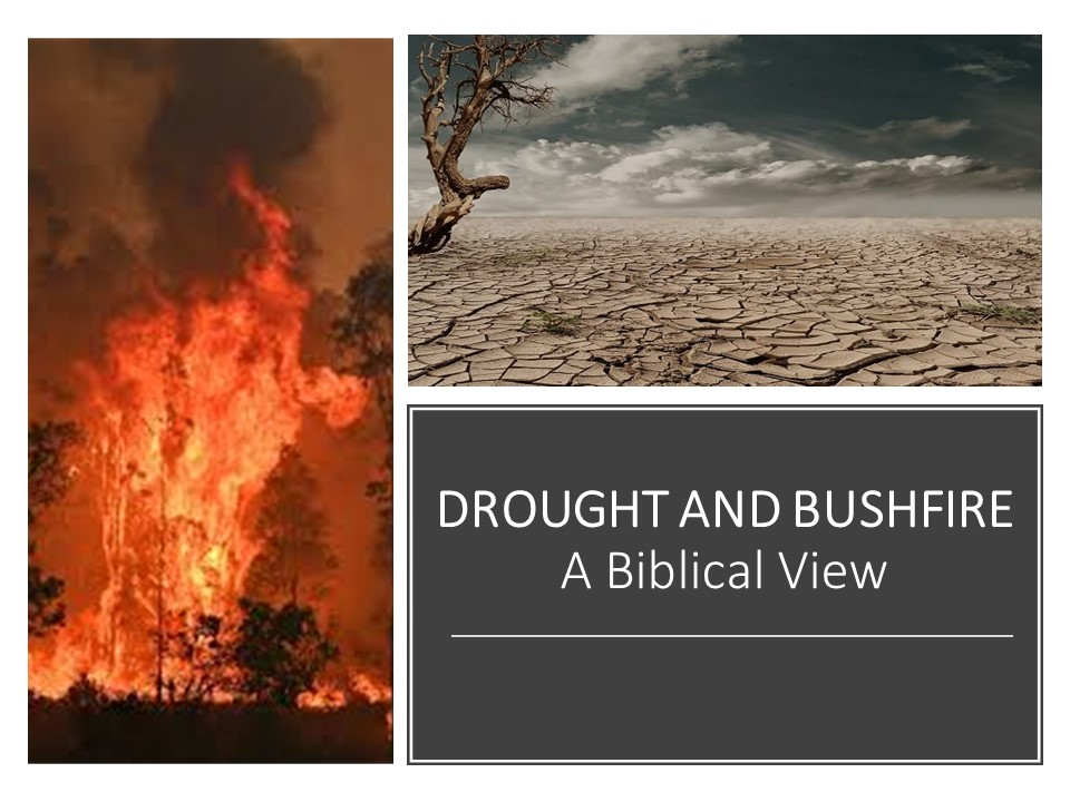 Drought and Bushfire 1 – The Buck Stops Here