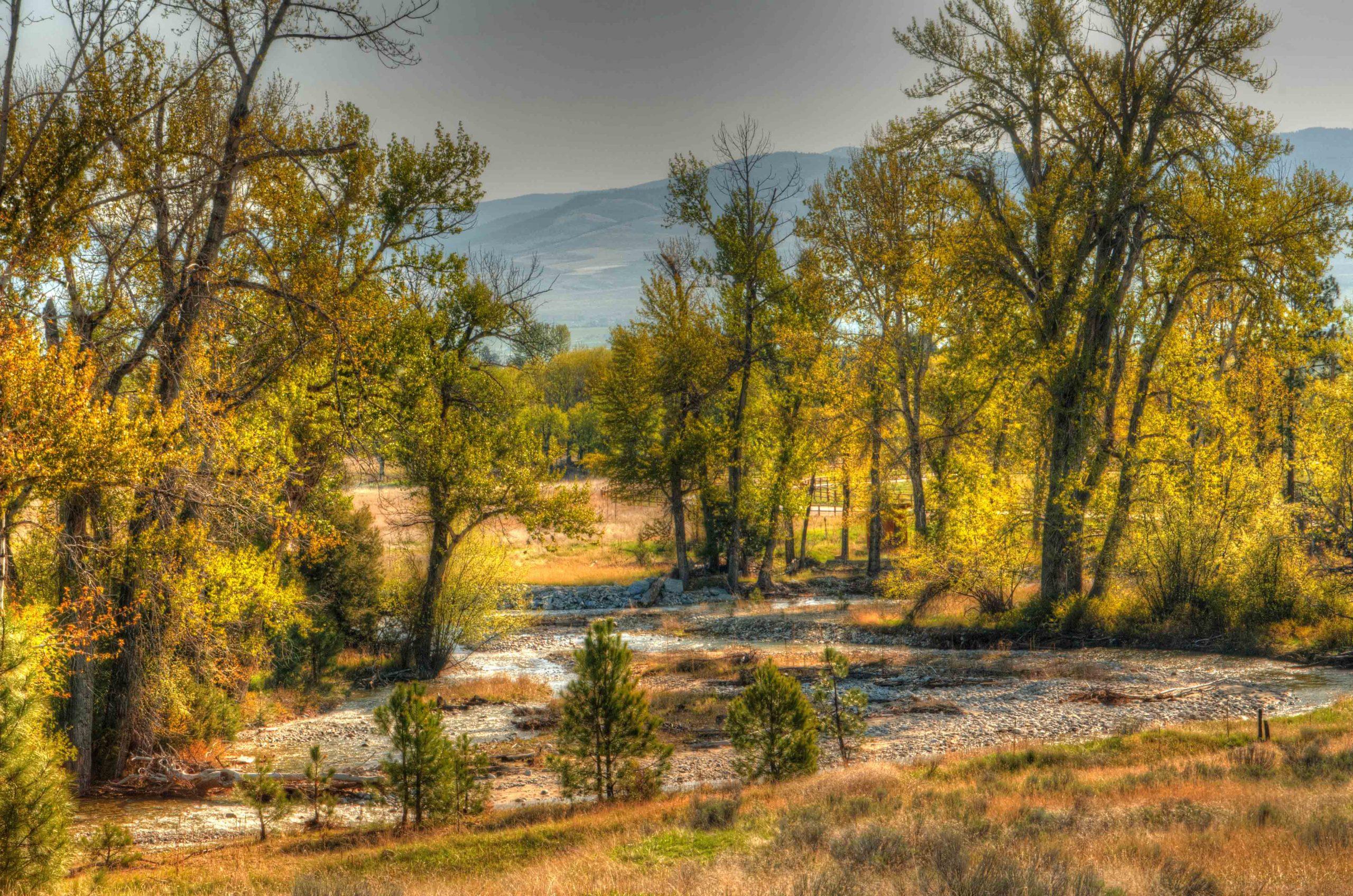 Burr Creek 3