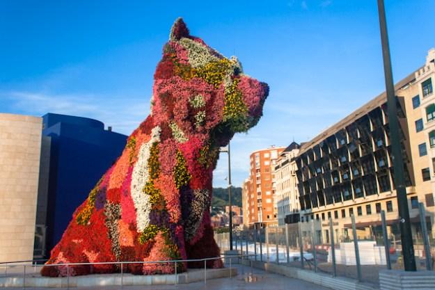 puppy Bilbao