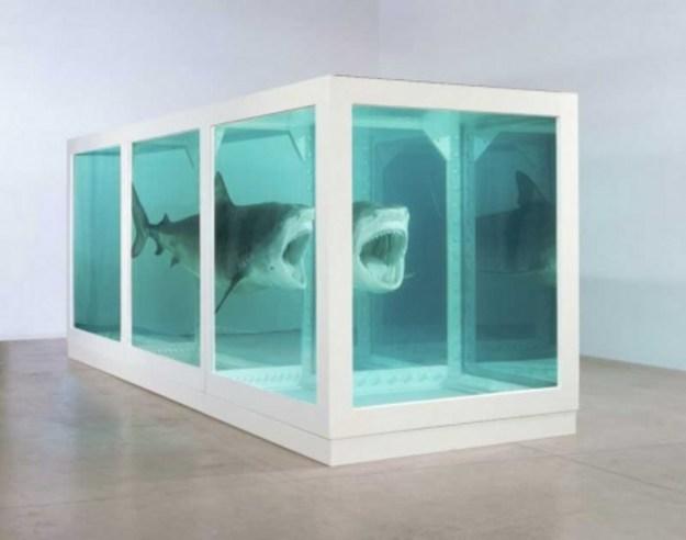 damien hurst shark 2