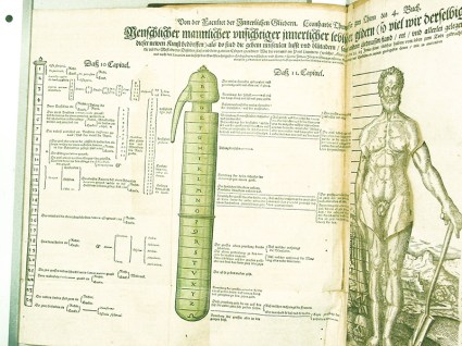 Figure 3: Man-shaped matula and Adam, Thurnneiser Confirmatio-p34-Dist-of-Body