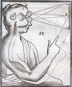 Human profile, with the eyes and brain showing a theory of vision, Tractatus de Homine, 1677, page 139.