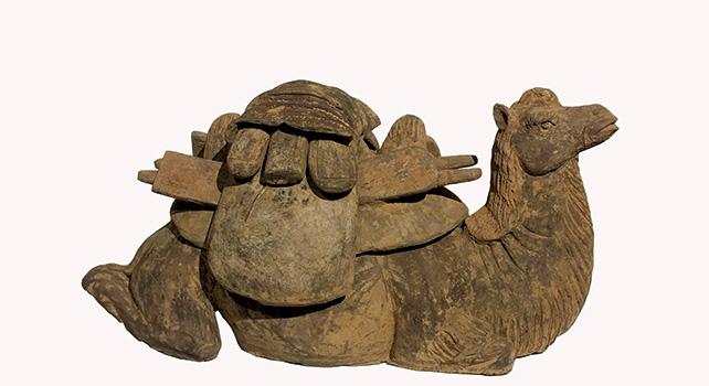Rare Bactrian Camel