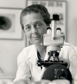 "Image result for ""Rita Levi-Montalcini"""