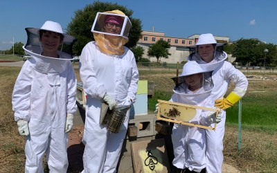 Becker Bee Buzz 9.24: Hive Tours