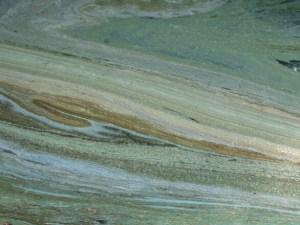 pond-scum2