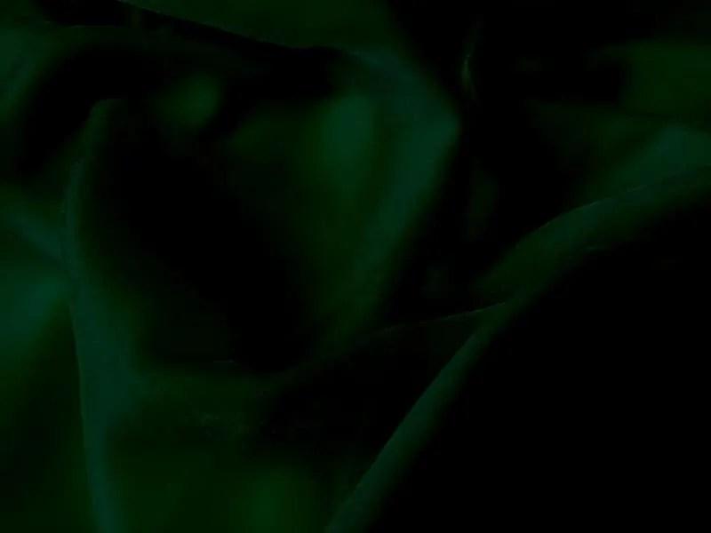 SilkViscose Velvet Dark Green Beckford Silk